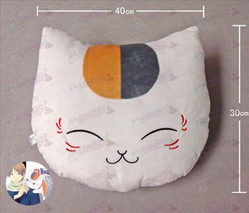 Pillow Profesor del gato