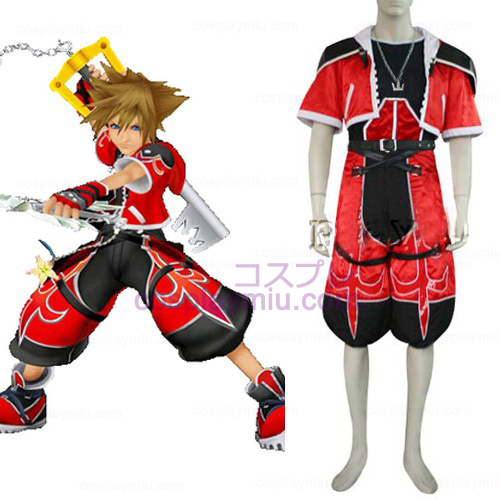 Kingdom Hearts 2 Sora Brave Form Trajes Cosplay